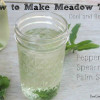 An Iced Herbal Tea- Meadow Tea