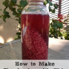 How to Make Kombucha with Chia