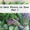 How to Save Money on Real Food Part 1