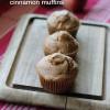 Soaked Apple Cinnamon Muffins