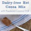 Instant Dairy-Free Hot Cocoa Mix