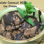 Chocolate Coconut Milk Ice Cream w/ Chocolate Magic Shell