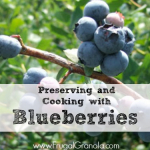 Preserving and Cooking with Blueberries