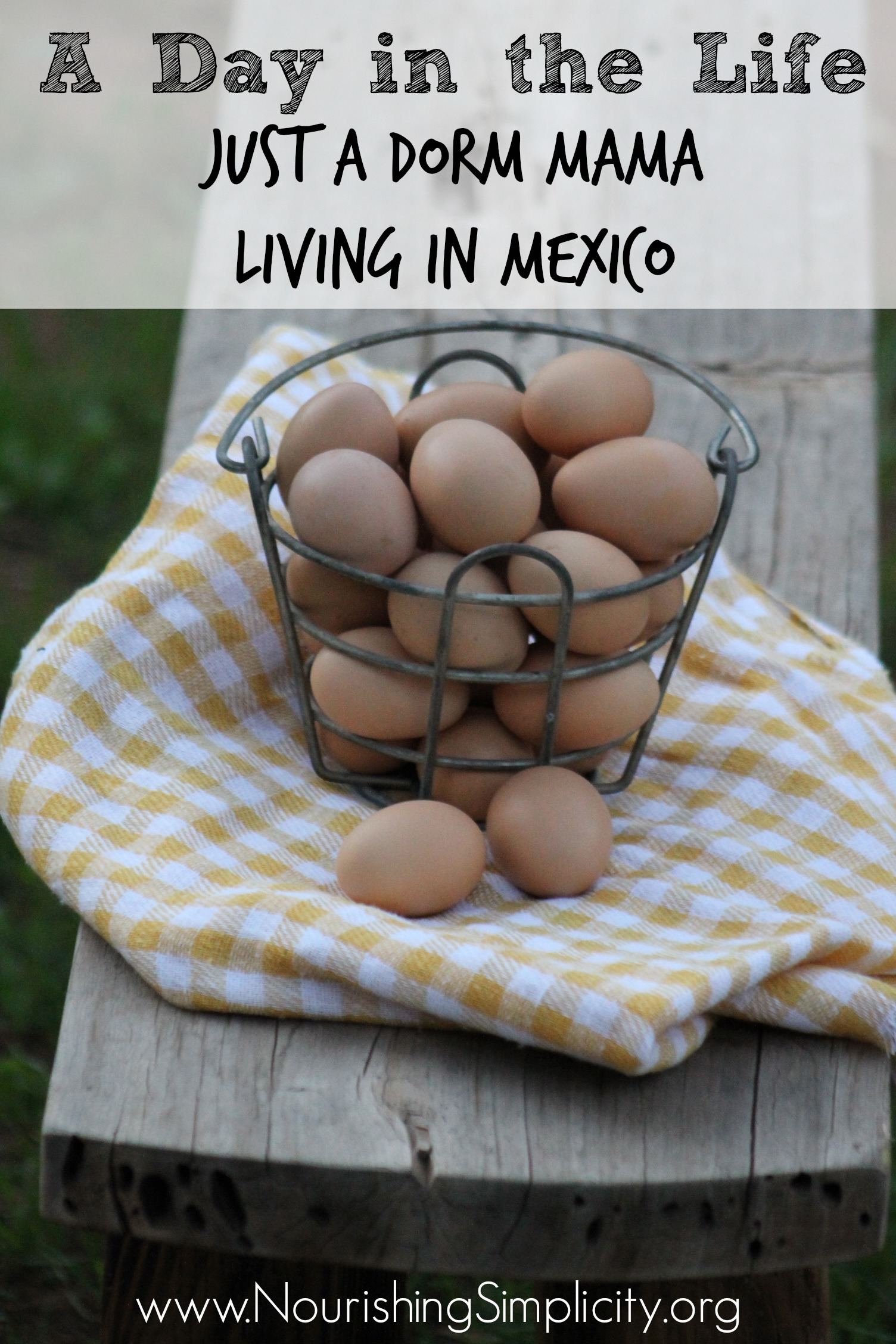 A Day in the Life: I'm Just a Dorm Mama Living in Mexico