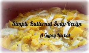 aGypsyHerbal-butternut-soup