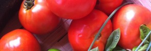 67-Things-to-Make-with-Tomatoes-RichlyRooted.com_