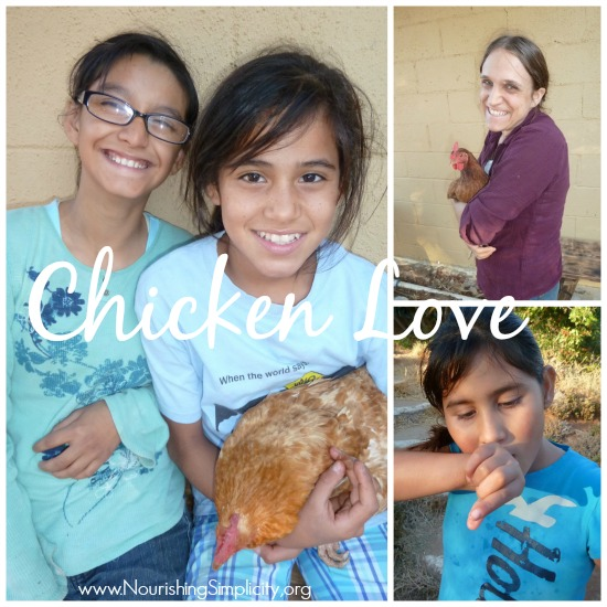 Chicken Love 2