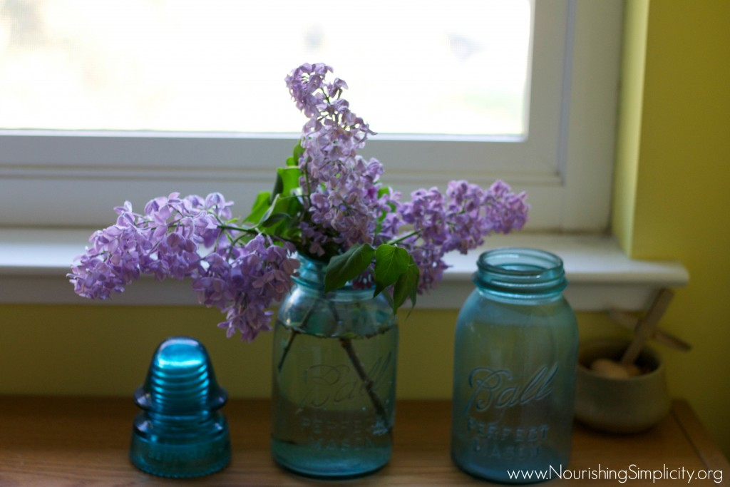 A Single Gal's Guide To Homemaking -www.nourishingsimplicity.org