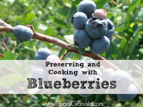 Preserving and Cooking with Blueberries- www.nourishingsimplicity.org